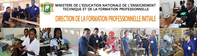 Direction de la Formation  Professionnelle Initiale
